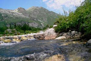 Гора Пшехо- Су и начало реки Белой