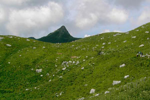 Пик горы Маврикошка